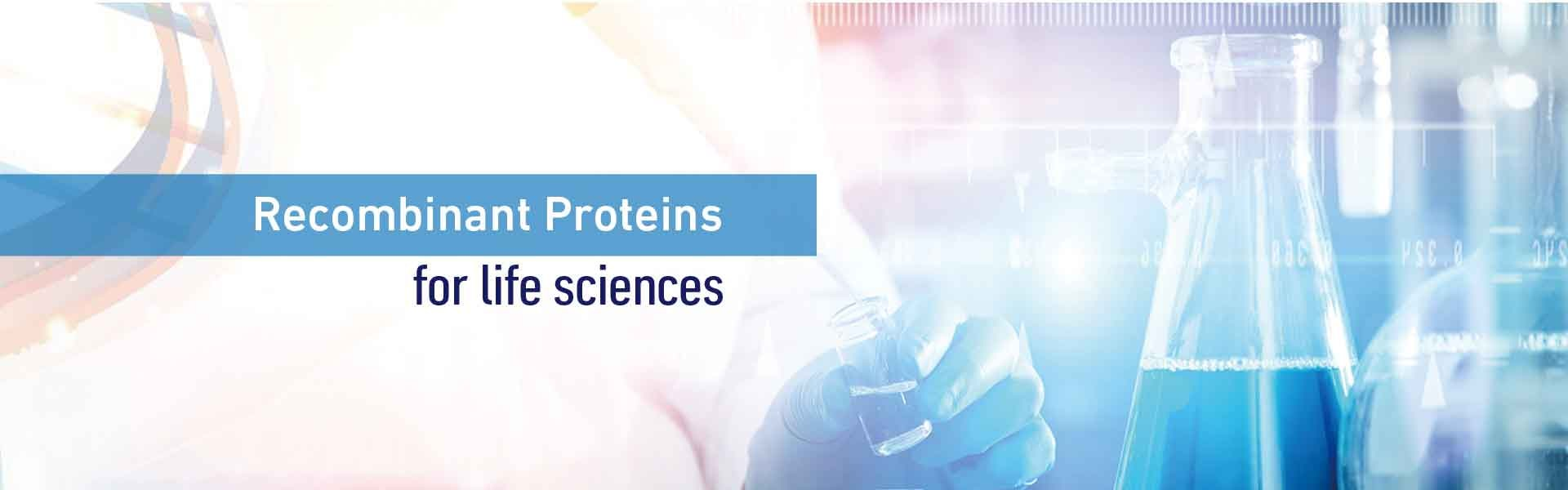 Recombinant Protein Supplier